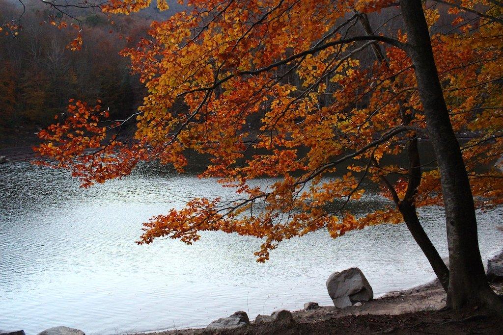 Top 4 destins naturals de Tardor a Catalunya